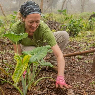 As part of her Conservation work in Ecuador for older adults, a Projects Abroad volunteer helps planting indigenous plants.